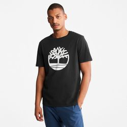 T-shirt À Logo Arbre En , Taille 3XL - Timberland - Modalova